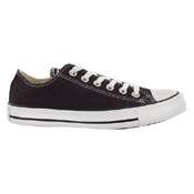 Converse Chuck Taylor Seasonal Low Top Shoe