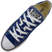 Converse Chuck Taylor Seasonal Low Top Shoe