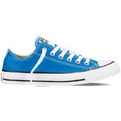 Converse Mens Chuck Taylor All Star Seasonal Low Top Shoe