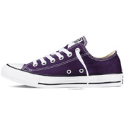 Converse Mens Chuck Taylor All Star Seasonal Low Top Shoe