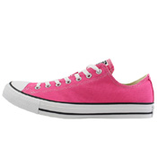 Converse Chuck Taylor All Star Seasonal Low Top Shoe